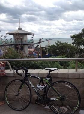 Elain Harwood bicycle